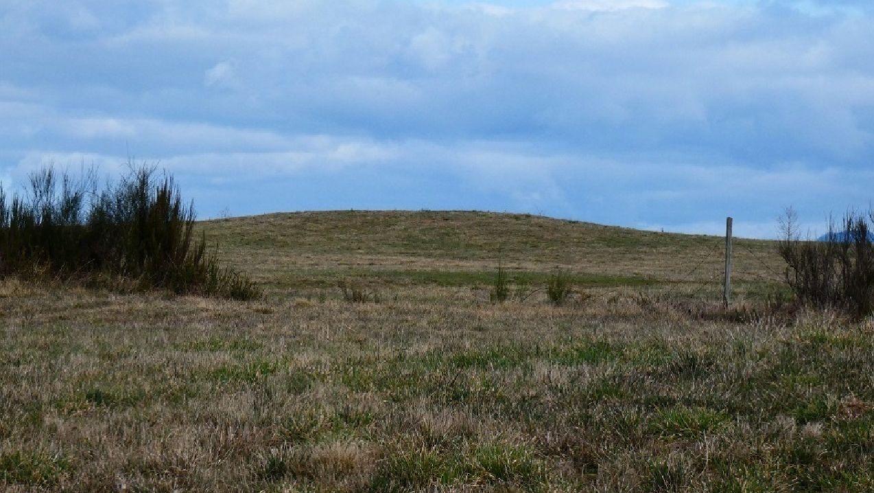 Una mámoa que fue localizada este año en el municipio de Ribas de Sil, donde antes no se habían documentado monumentos megalíticos