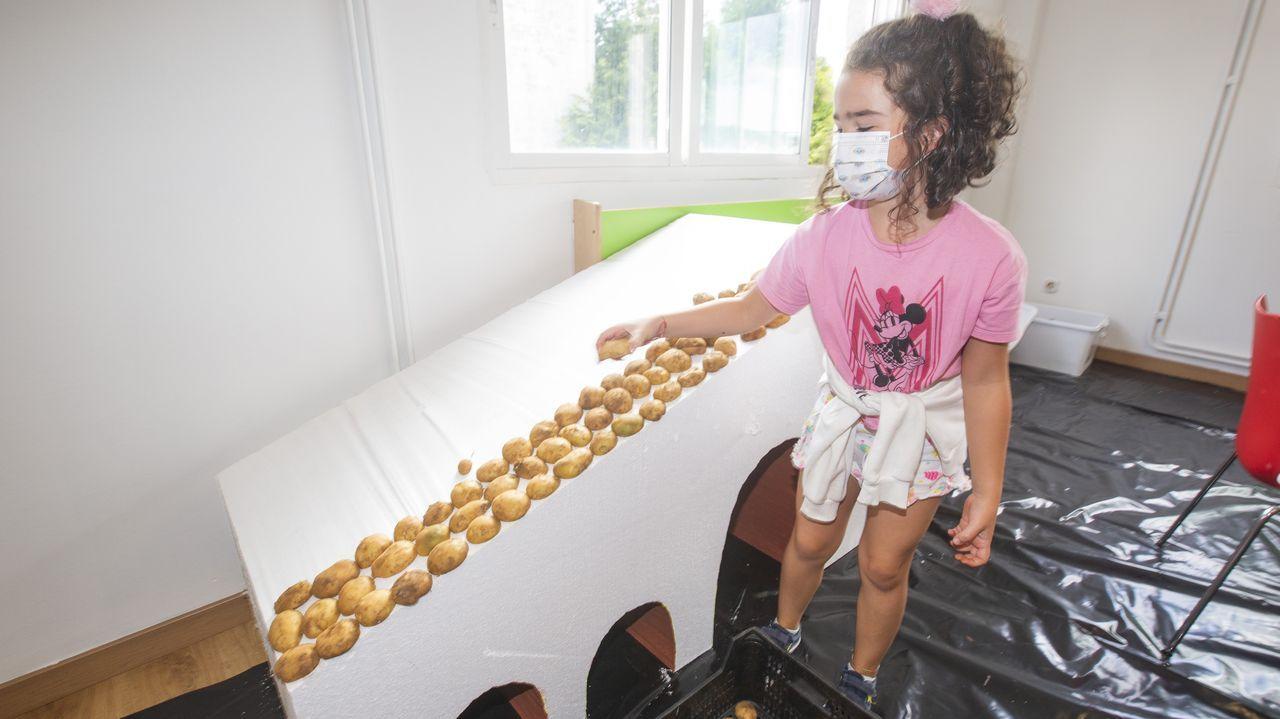 Los robots se apuntan a la vendimia en Terras Gauda.Obradoiros infantiles en torno a la patata