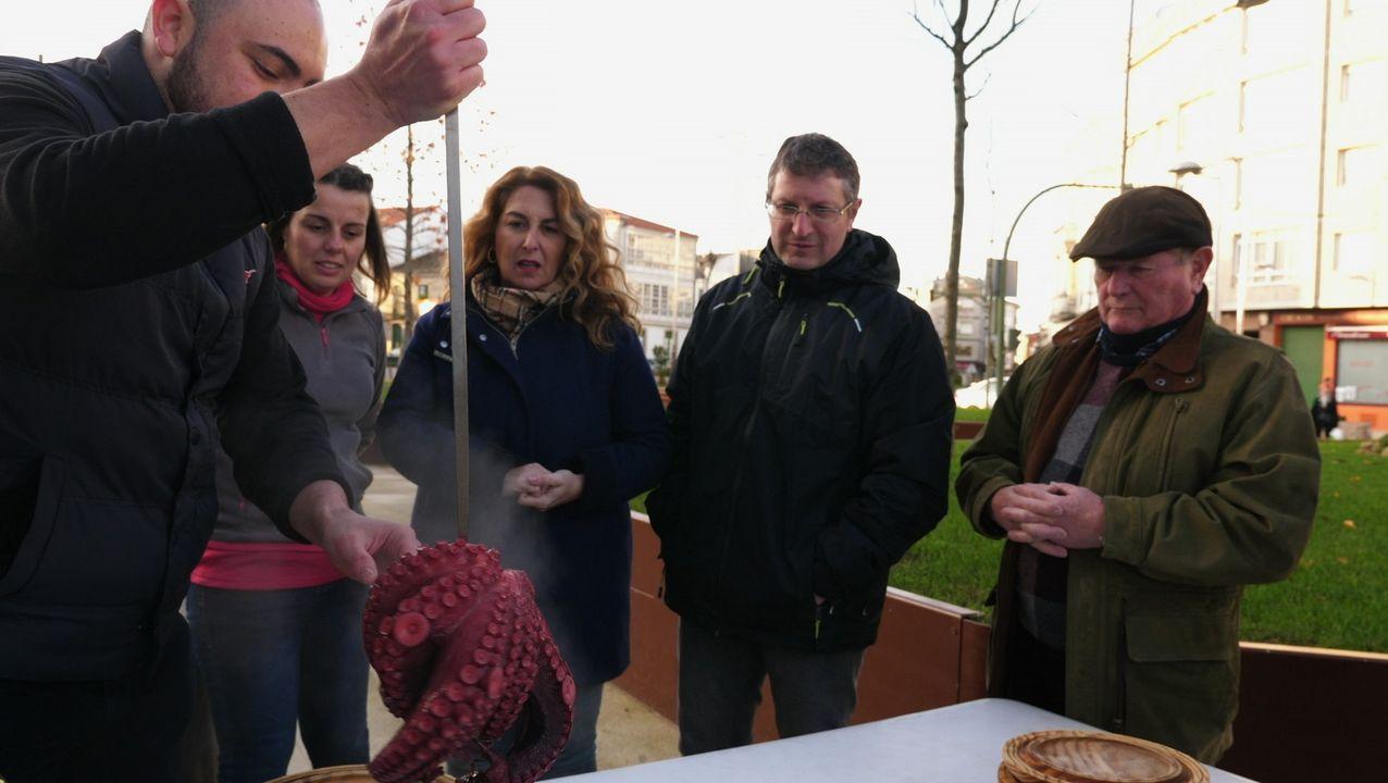 El proyecto de María Manuela Salvó los carballos que se entremezclan con las cabañas