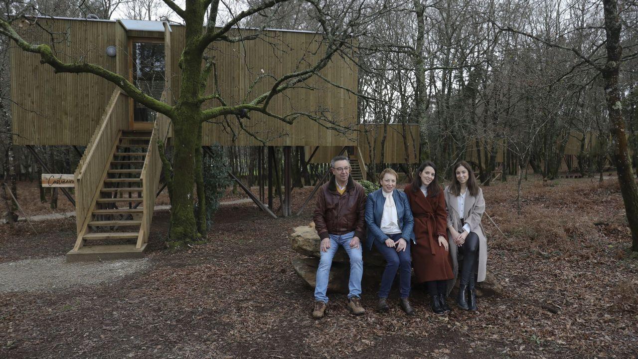 irixoa.El proyecto María Manuela salvó los carballos que se entremezclan con las cabañas