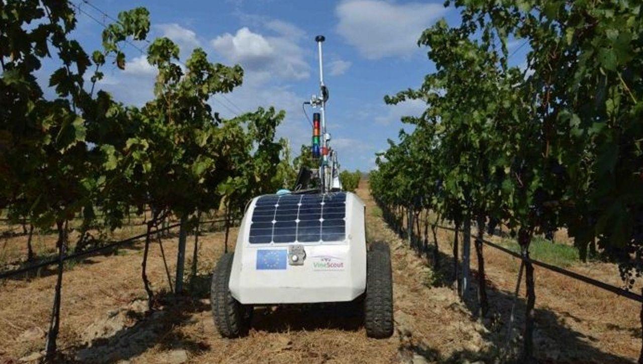 Charla sobre nuevas tecnologías en viticultura en Martín Códax.Robot de viticultura