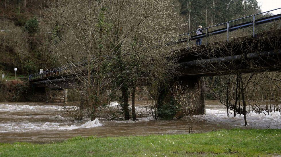 Foto de archivo del río Narcea a su paso por Quinzanas, con un nivel de agua elevado