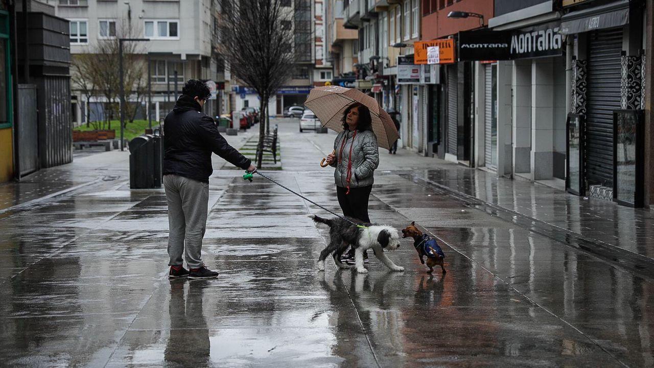 Dos personas pasean a sus mascotas en la Calle Barcelona de A Coruña esta tarde