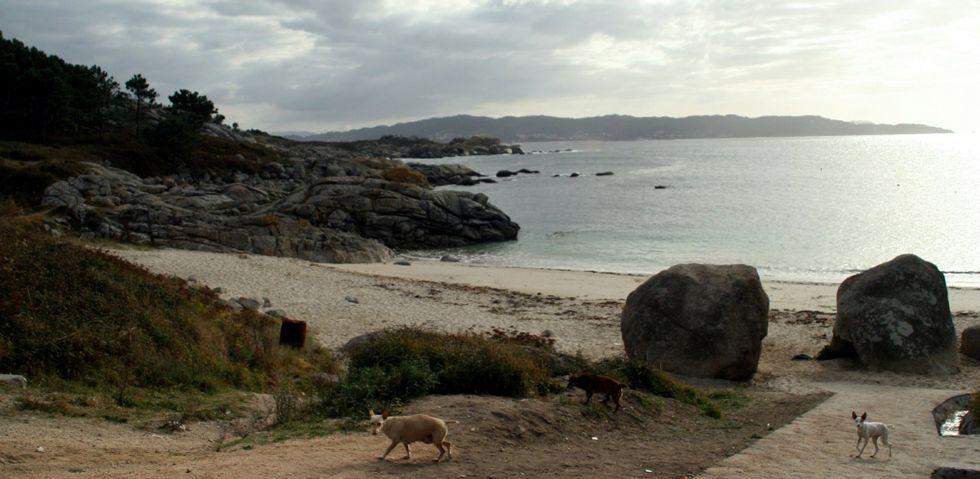 La playa de Ancoradouro, en cabo Udra, por donde discurre uno de los senderos azules con los que cuentan las Rías Baixas.