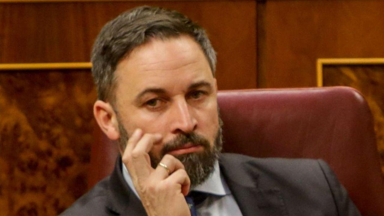 Santiago Abascal, en el Congreso