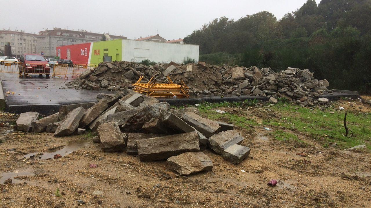 Recuperan cuatro grullas coronodas robadas en Pontevedra.Imagen del acusado por maltrato animal en los juzgados