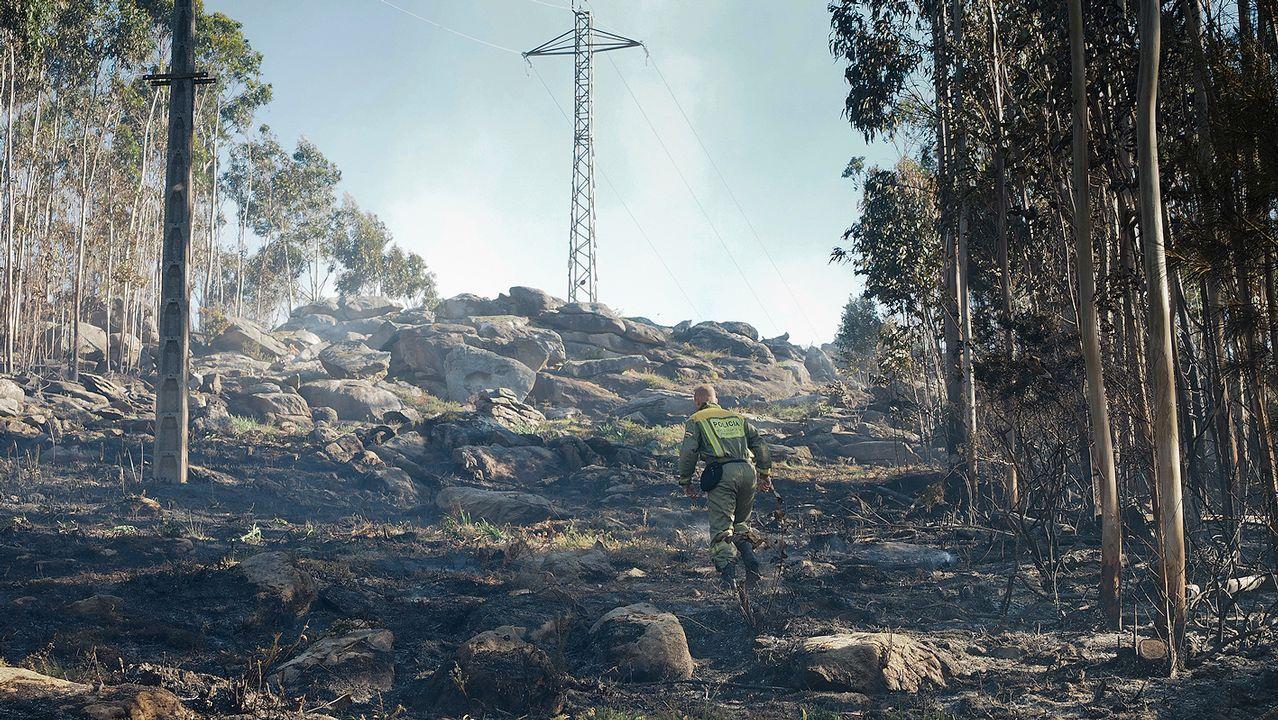 El fuego se inició por una chispa que saltó de una torre de alta tensión