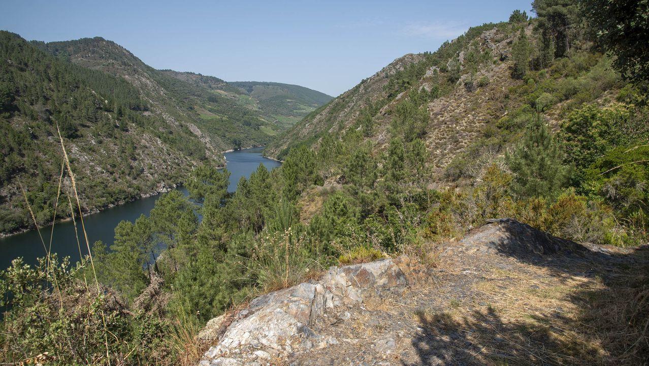 Una vista del cañón del Sil en un tramo del camino
