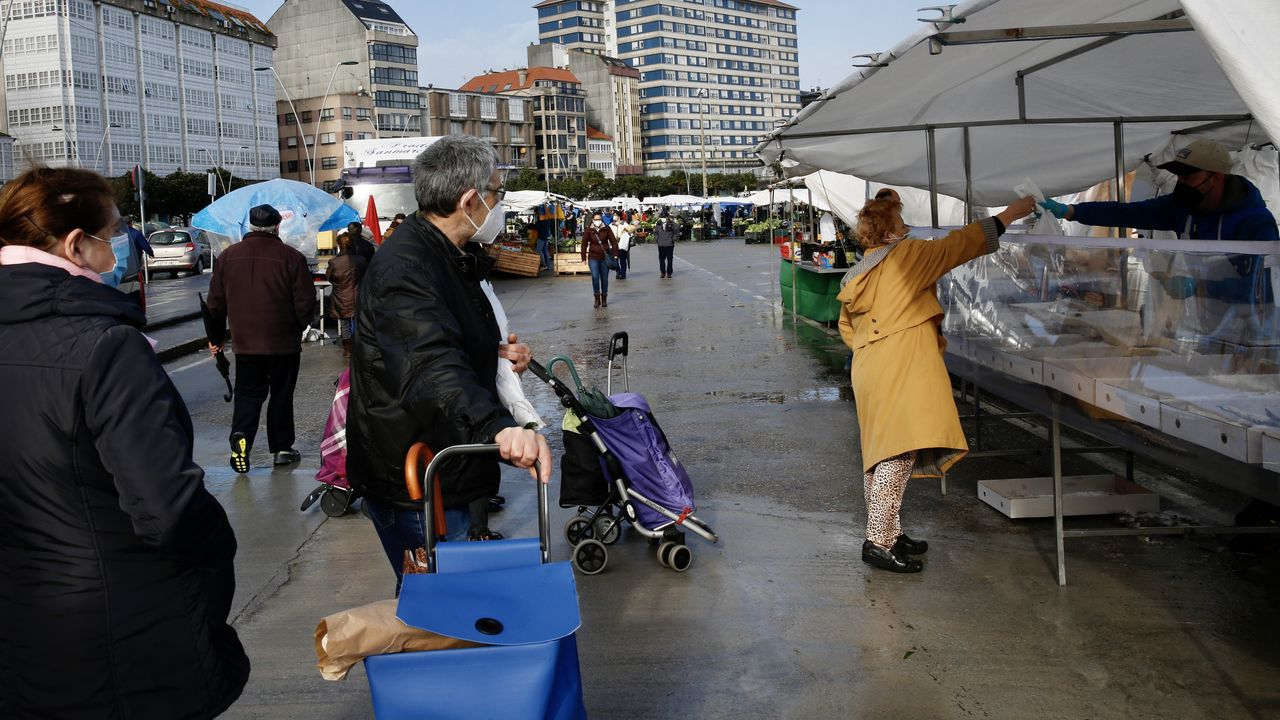 Estas semanas en Ribeira se celebró el mercadillo solo con puestos de alimentación y plantas