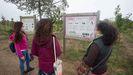 El bosque preparado en As Gándaras tiene una extensión de veinte hectáreas