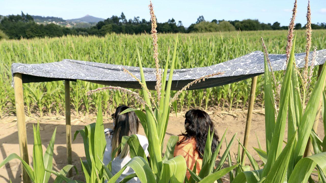 Pasear por un laberinto de maiz y terminar en una cantina, nueva propuesta de ocio verde en Teo.Uno de los yates, de 52 pies, que alquila en la ría de Pontevedra la empresa Sea Galicia