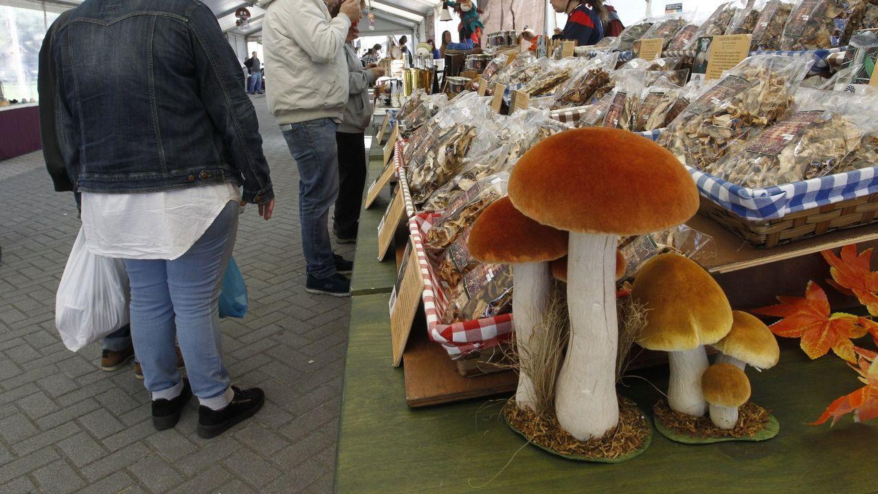 Las nuevas restricciones llegan a A Coruña.Las setas serán el ingrediente principal de los pinchos que ofrezca la hostelería local