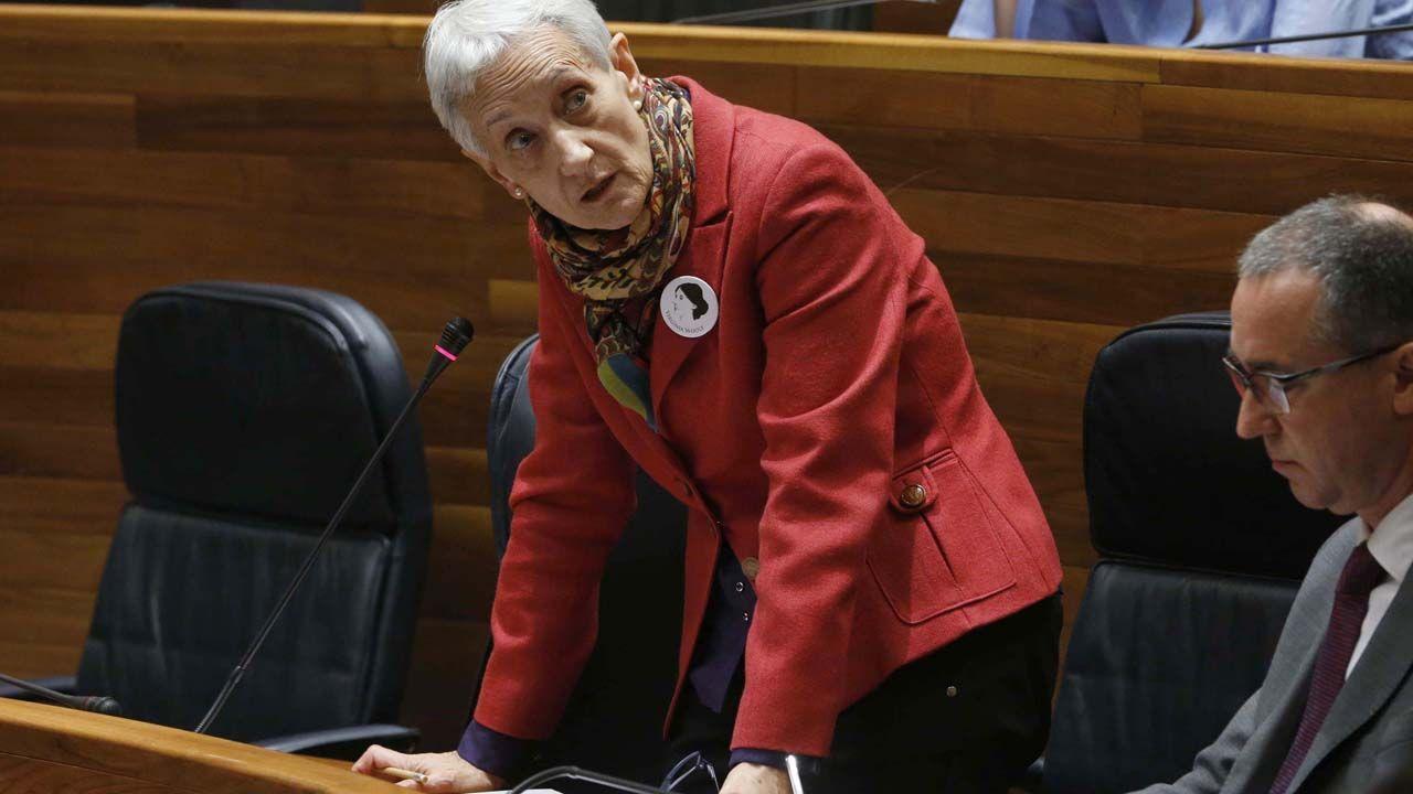 La consejera de Educación, Carmen Suárez, interviene en el pleno, al lado del consejero de Sanidad, Pablo Fernández Muñiz.