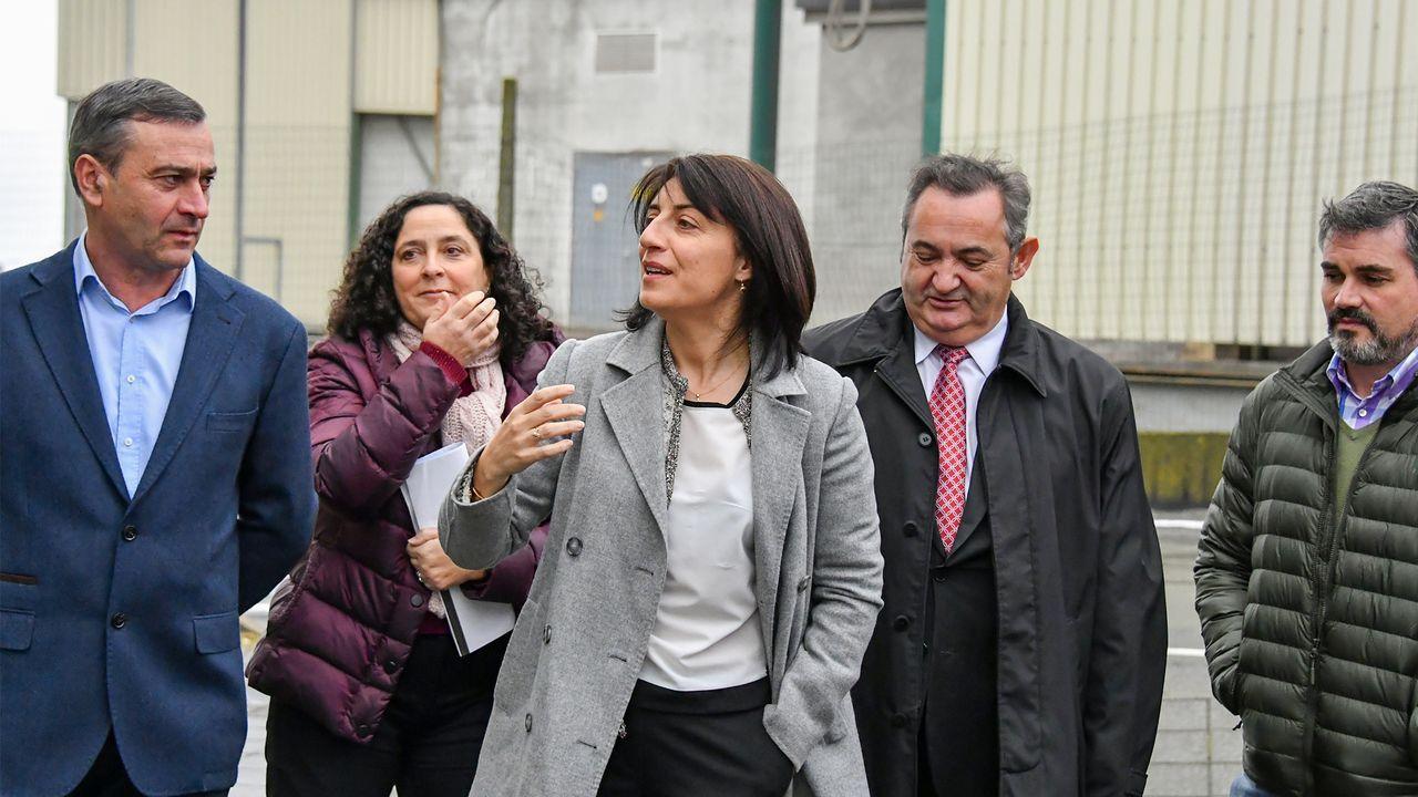 La exconselleira de Medio Rural, Ángeles Vázquez, visitó las instalaciones de Os Irmandiños en 2017