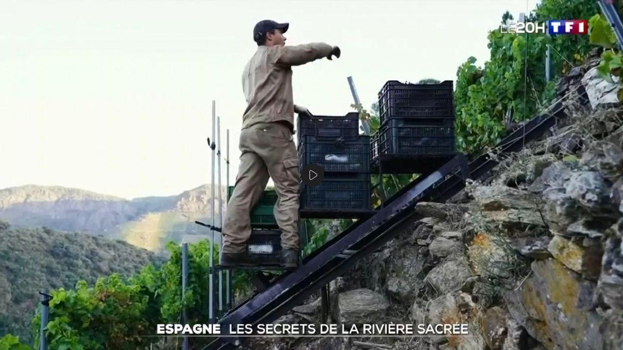 ¿Cómo podrá salir reforzado de la pandemia el sector del vino en Galicia?.Un elevador de cajas de uvas en un viñedo de Sober en una captura de imagen del reportaje del canal France 2 sobre la Ribeira Sacra