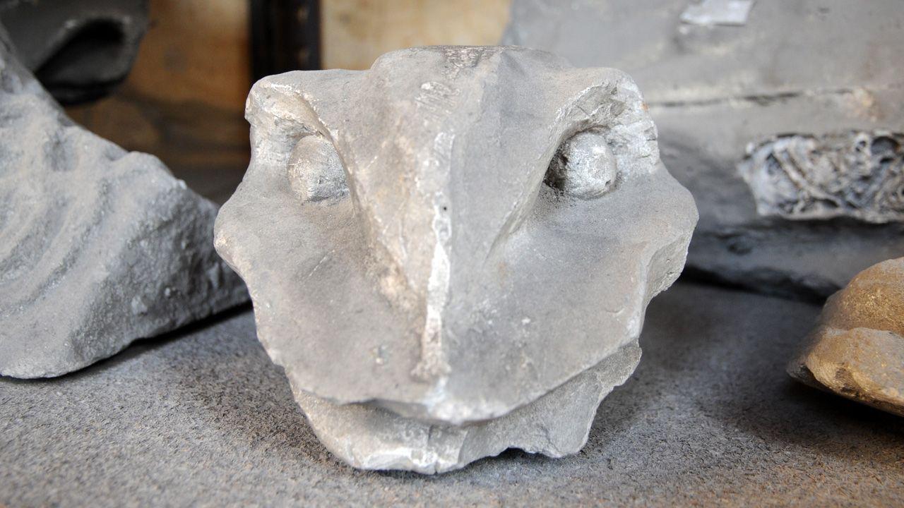 Molde en yeso de una cabeza reptiliana de las gárgolas de la Catedral de Oviedo