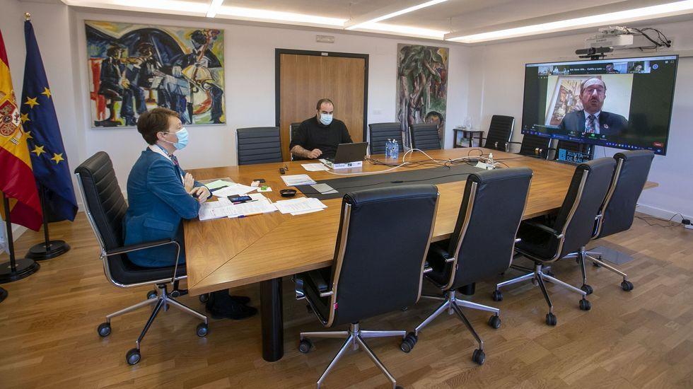 La directora xeral de Patrimonio, en la reunión por videoconferencia del comité español