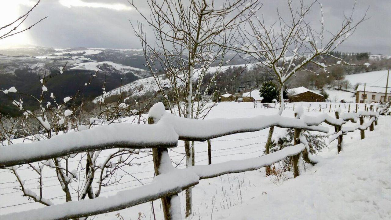 Paisaje helado y nevada del Huerna a la altura del embalse de Barrios de Luna.Los Oscos se tiñe de blanco