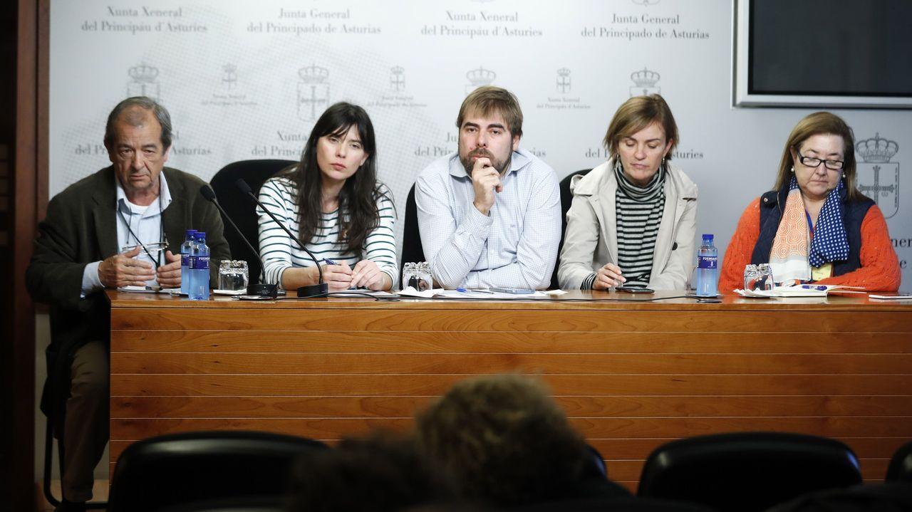 El secretario general de Podemos Asturies, Daniel Ripa (c), junto a la responsable de sanidad de dicha formación, Covadonga Tomé (2d), y representantes municipales y vecinales de Gijón, durante la rueda de prensa que ofrecieron este lunes sobre la situación de la sanidad en la región