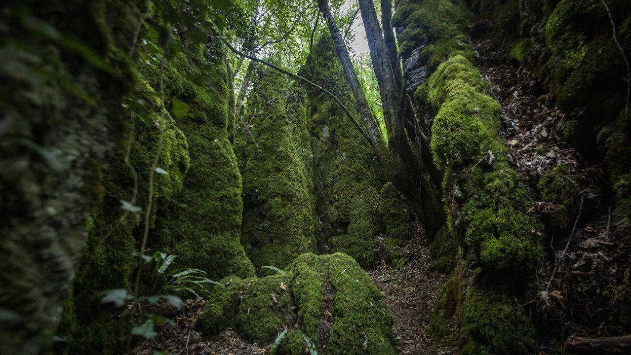 Muchos de los parajes que se han creado son propios de alguna de las historias de Tolkien