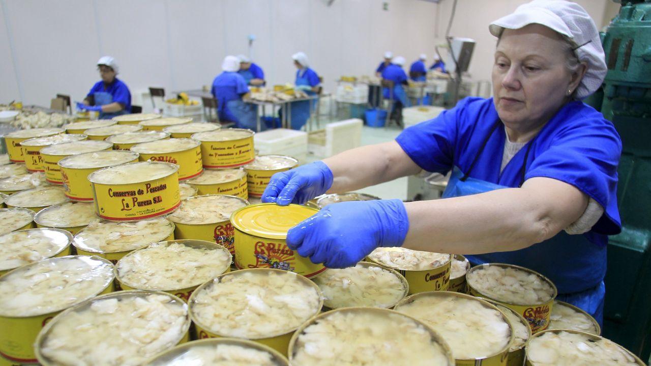 Trabajo de envasado en el interior de la fábrica, antes de la pandemia