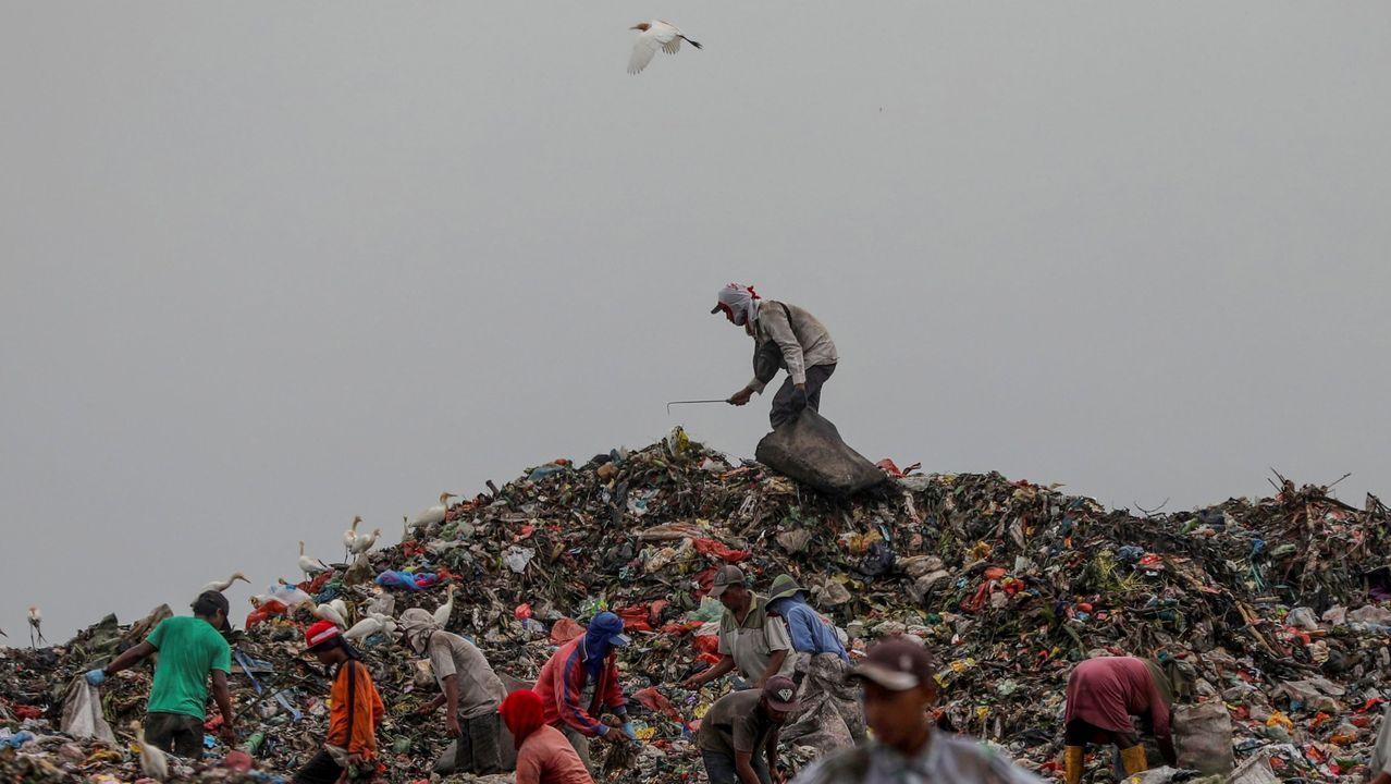 Persoas recollen material para reciclar nun vertedoiro