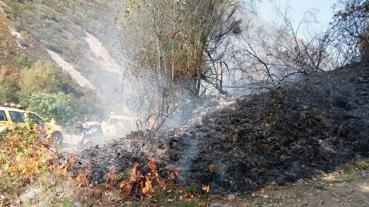 Uno de los incendios forestales declarado en Asturias