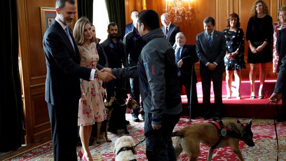 Los Reyes saludan a la Unidad Canina de Rescate del Principado de Asturias, durante su audiencia a los galardonados con las Medallas de Asturias 2017, con motivo de la ceremonia de entrega esta tarde de los Premios Princesa de Asturias 2017.