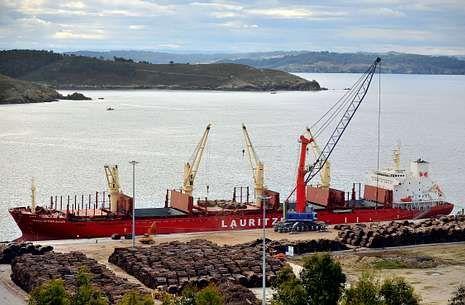 En la fotografía, una descarga de madera en las instalaciones del puerto exterior.