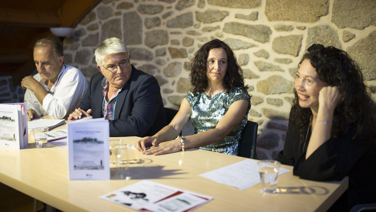 La primera prueba con un cerdo del respirador 3D en Asturias.El logo de la NASA