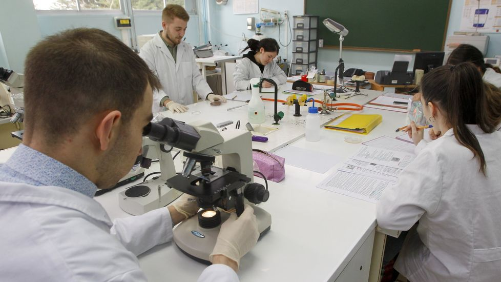 La guía de estudios ofrece información sobre todas carreras y ciclos de FP que hay en Galicia