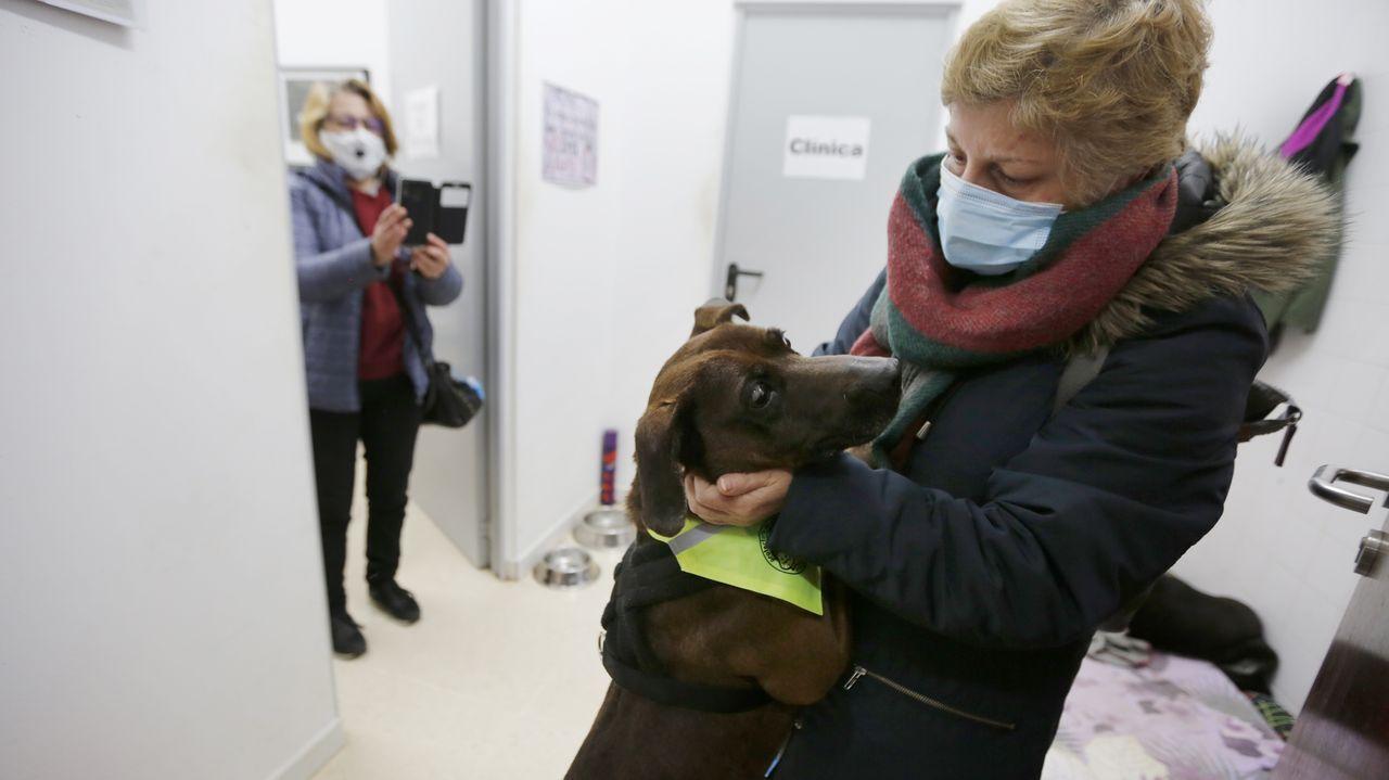 El perro Topi por fin puede viajar a su nuevo hogar.Imagen del viaje del Adrián Vázquez