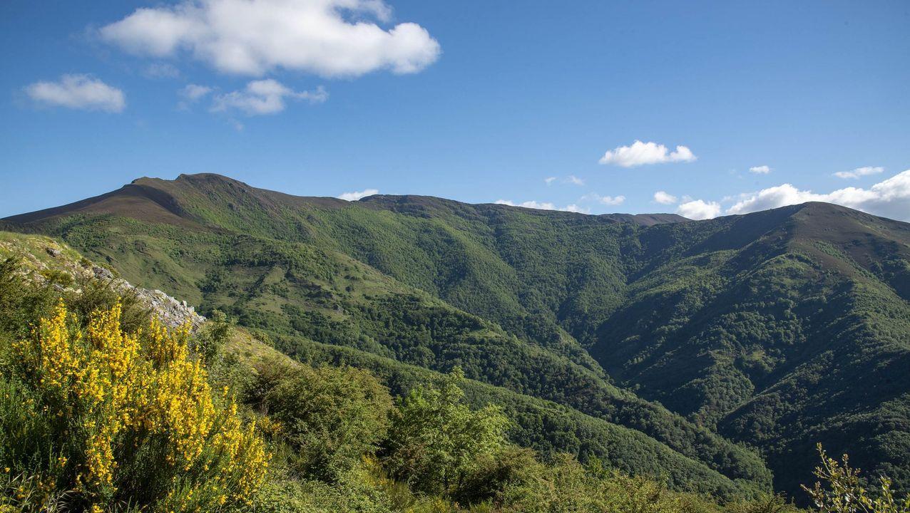 Vista de la Devesa da Rogueira, uno de los parajes más conocidos de O Courel