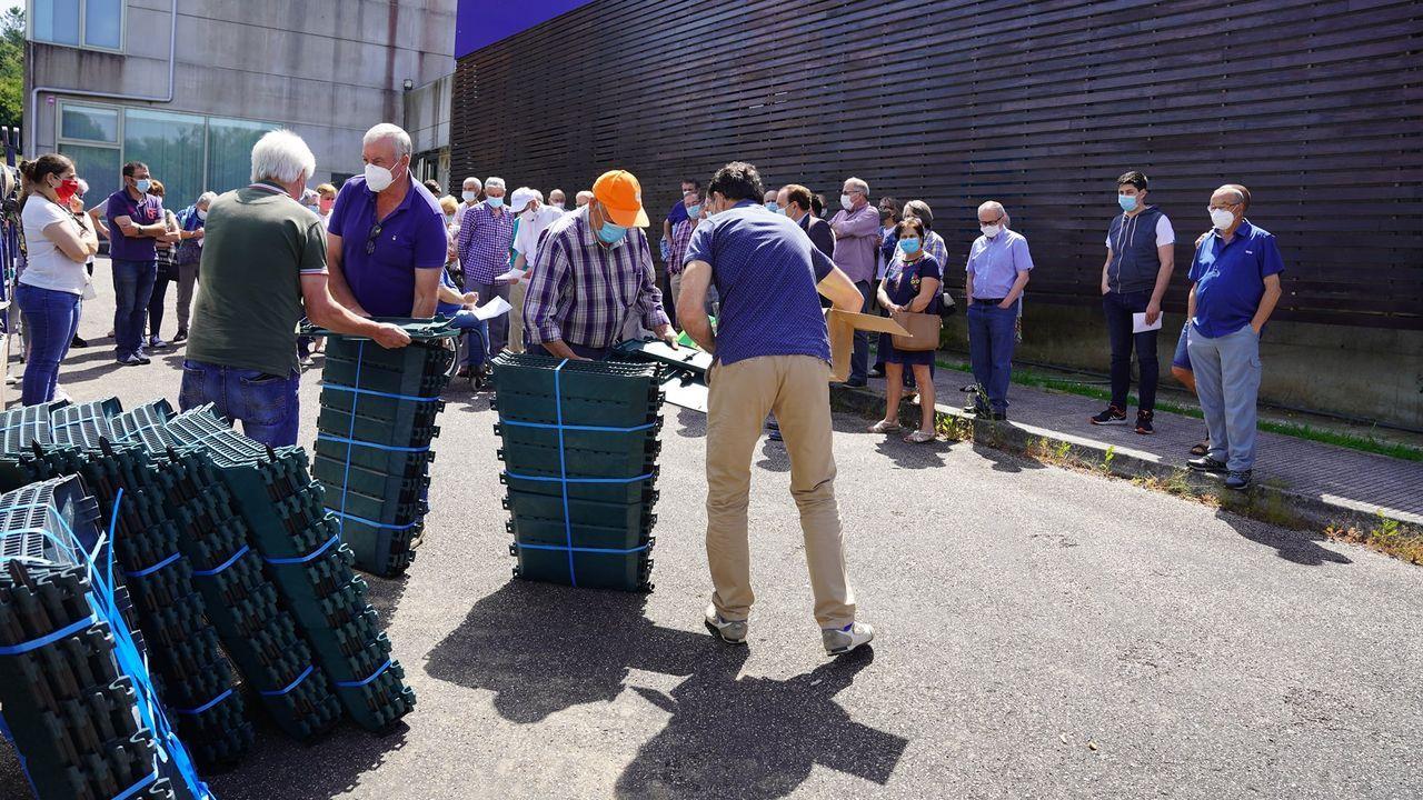 SOS Areoso.Reparto de los cubos que sustituyen a los contenedores y que se retiran después de que los vecinos dejen la basura