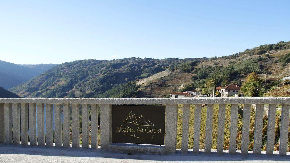 Mirador de la bodega Abadía da Cova, una de las incluidas en la ruta