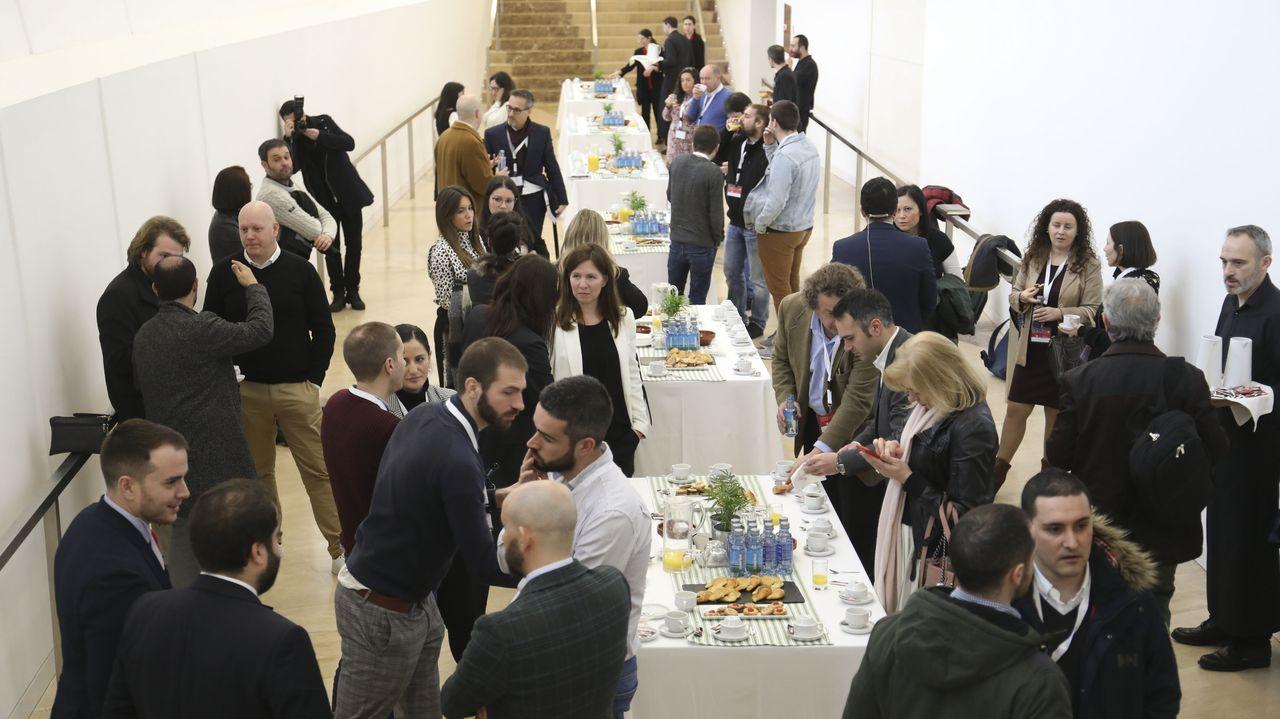 El director del Museo de Bellas Artes presenta la exposición de Orlando Pelayo