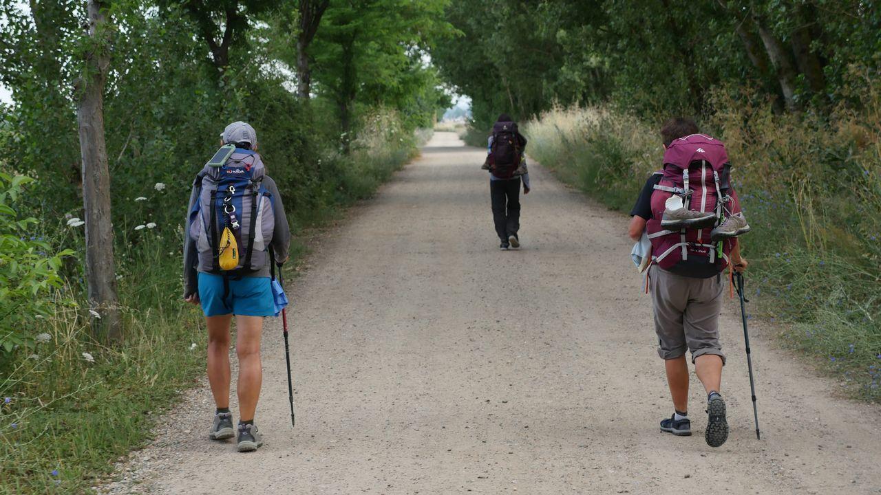 Peregrinos, a la salida de Mansilla de las Mulas