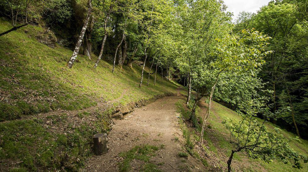 Un tramo del camino en la zona de A Leiriña