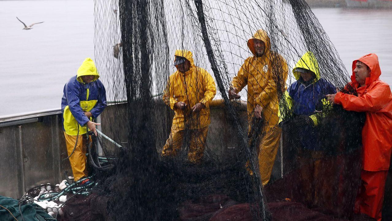 Según el sector, durante el estado de alarma en puertos coruñeses hubo barcos que faenaron en días alternativos porque no tenían a quien vender sus capturas y se las pagaban poco