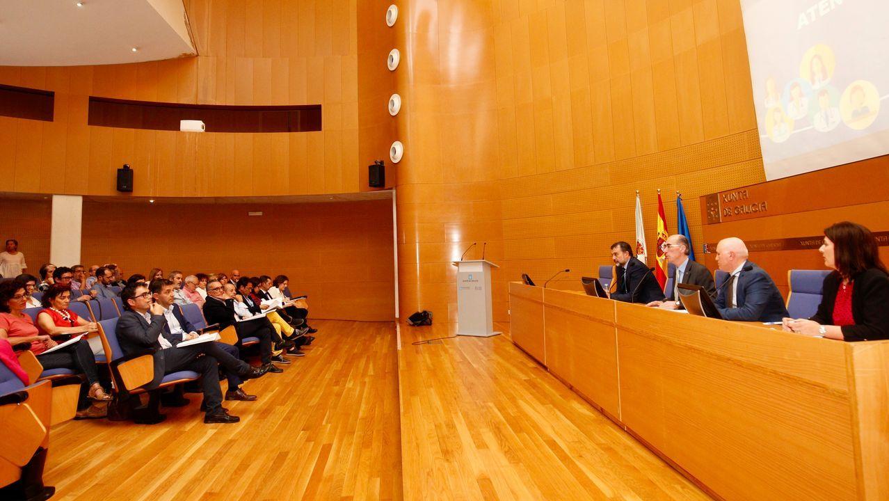 El conselleiro, el gerente del Sergas y el director xeral de Asistencia Sanitaria fueron los anfitriones en la constitución del Consello
