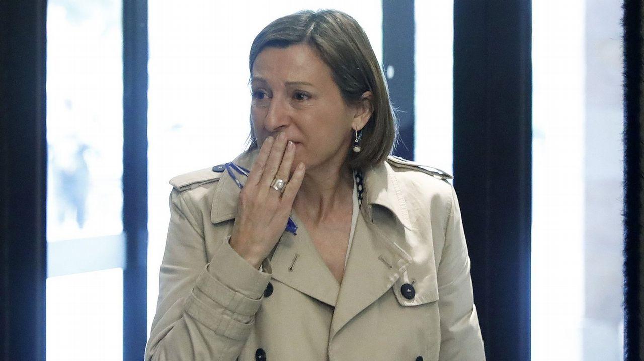 Puigdemont y Colau le dan la vuelta al tablero de las elecciones.Una vaca en un terreno quemado