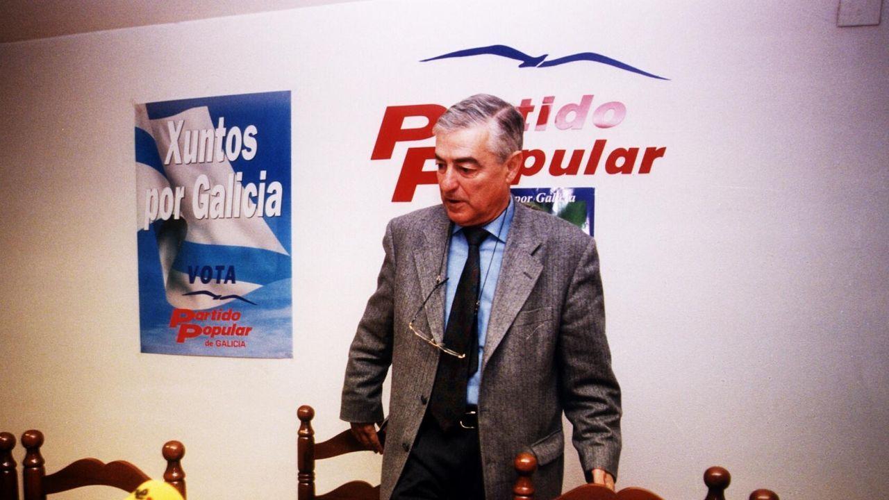 Francisco Álvarez-Cascos, tras su comparecencia en la comisión municipal por el 'caso Enredadera'
