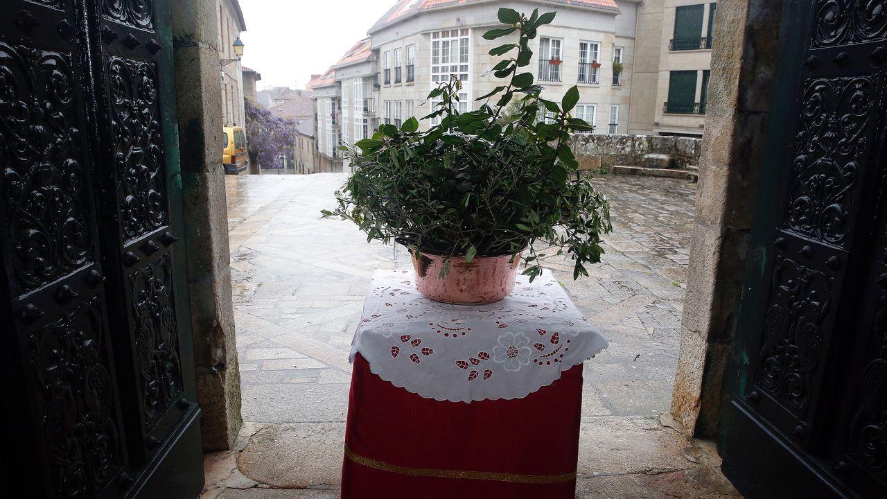Reproducción de los pasos de Semana Santa.Bendición virtual del Domingo de Ramos desde la Ferrería
