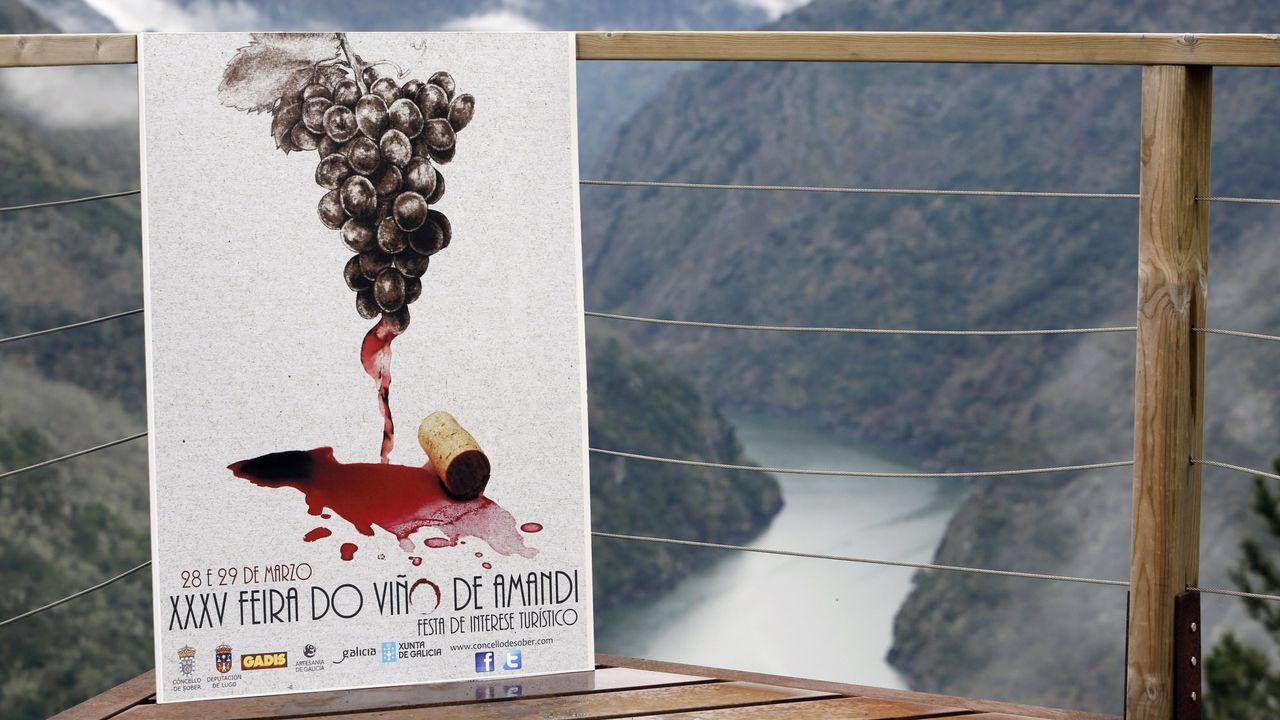 El vino y el cañón del Sil son dos de los elementos que pueden aparecer en el logo que busca el Ayuntamiento de Sober