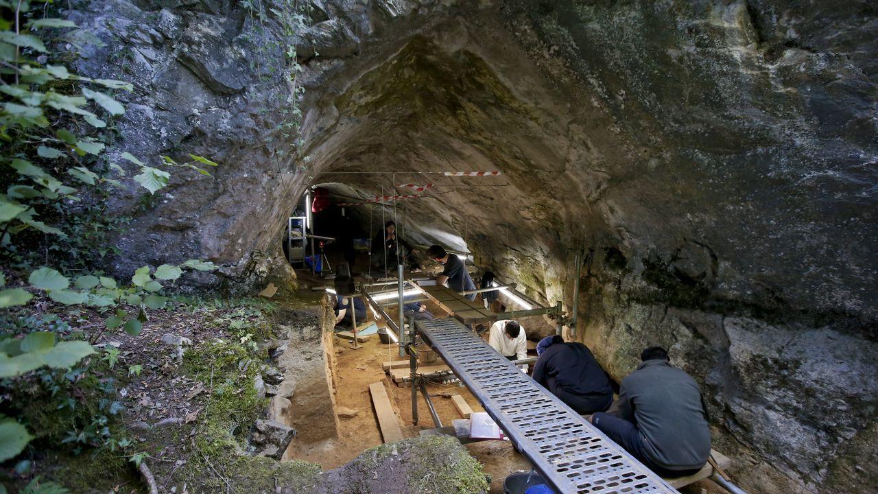 Diez años siguiendo el rastro de los hombres de Neandertal en Cova Eirós.El estudio demuestra que un oso cavernario de Cova Eirós y un oso pardo de Austria tuvieron antepasados comunes. Sobre estas líneas, réplica de un esqueleto de oso cavernario en el museo geológico de Quiroga