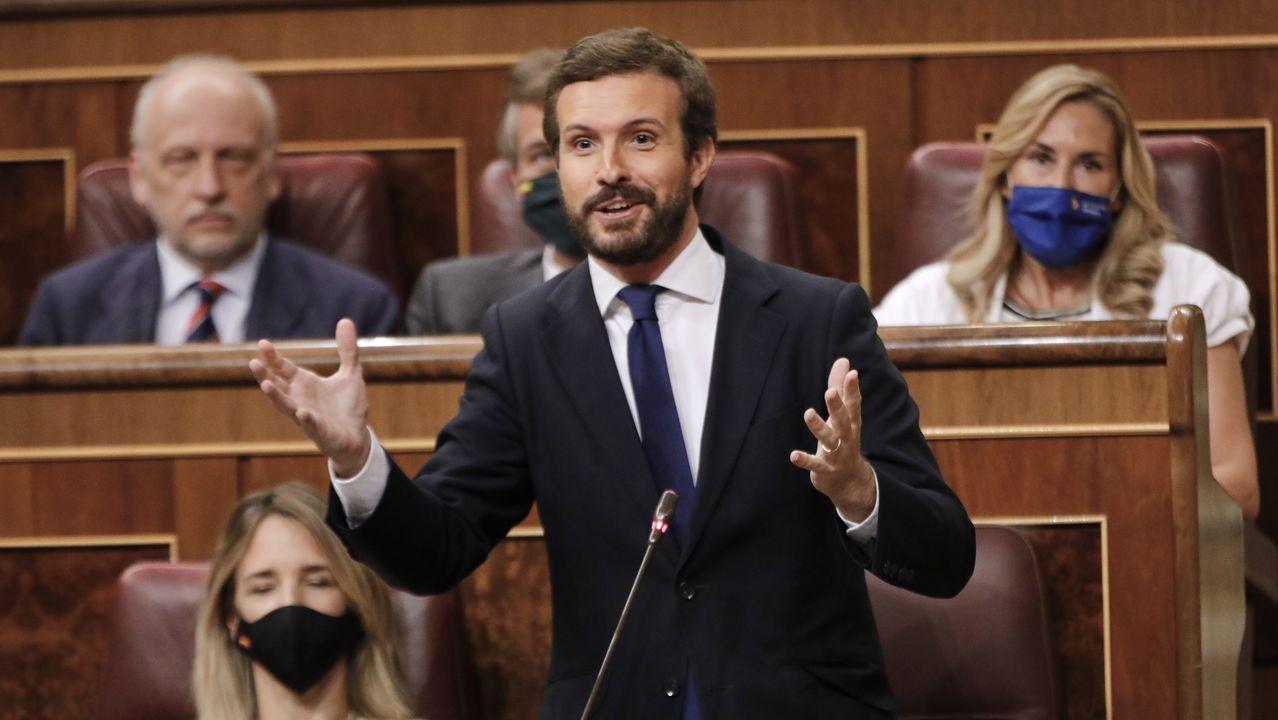 El líder del PP, Pablo Casado, interviene en el Congreso de los Diputados