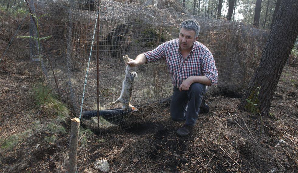 Los depredadores excavan y se cuelan por debajo de las vallas.