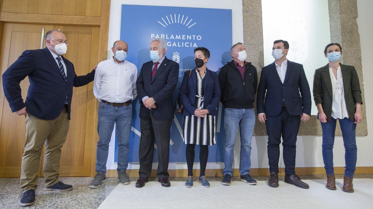 ¿Qué es «Piñatex»?.Los padres de Diego Bello, reunidos este martes en el Pazo do Hórreo con miembros del Parlamento de Galicia
