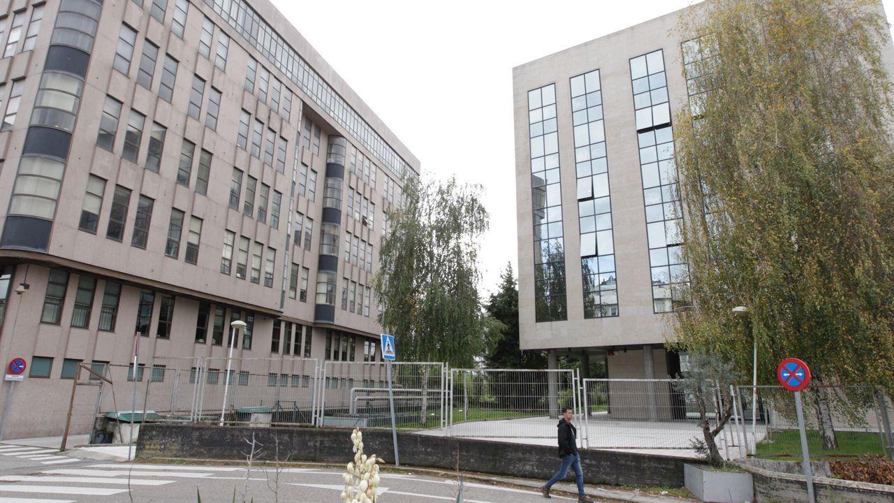 Los laboratorios de donde vienen también los niños en Vigo.La escritora sevillana Susana Martín, en la Semana Negra de Gijón