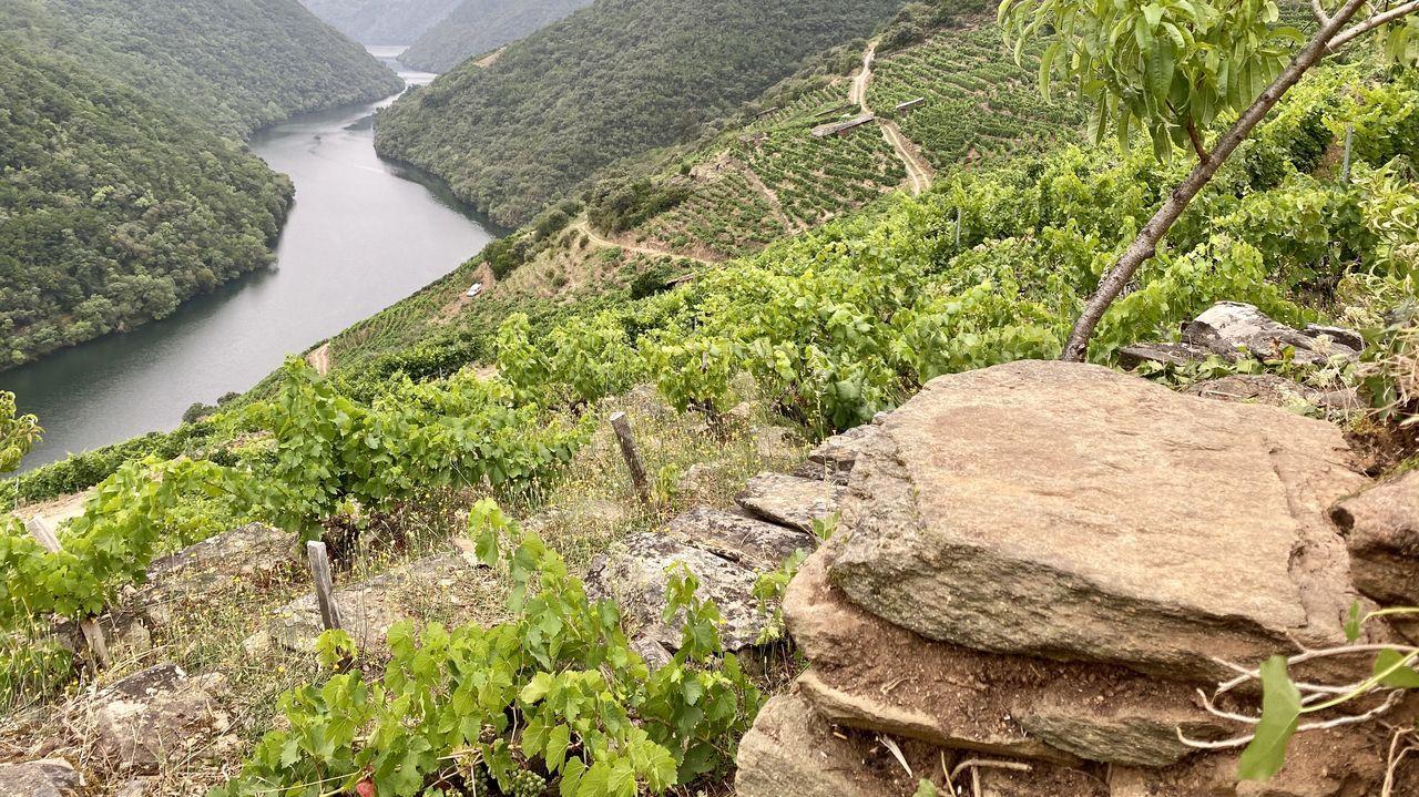 La piedra con la inscripción, a la derecha, se halla en la esquina de un antiguo muro